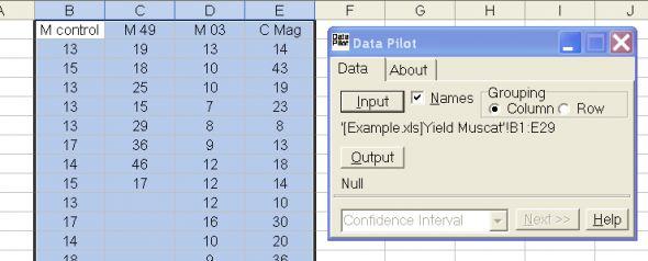 Data Pilot Screenshot