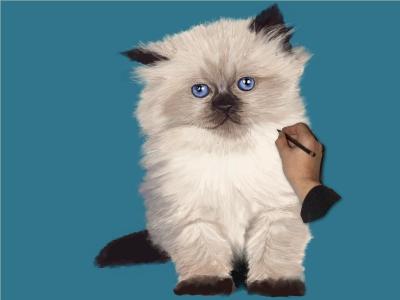 Cute Kitty by Drawing Hand Screenshot